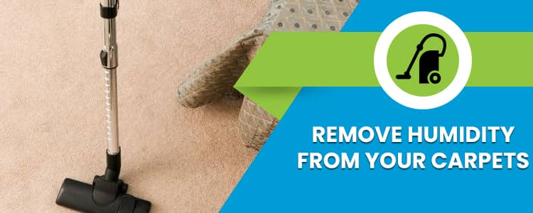 Remove Humidity from your Carpets