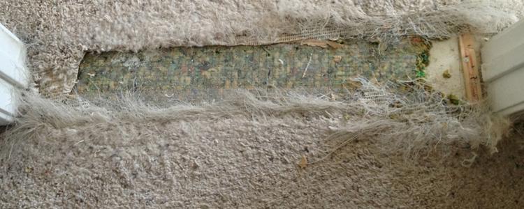 Best Carpet Repair Hawker